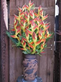 Maui August 2011 (186)